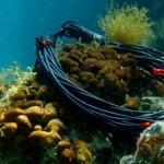 Morska kampanja bi.bi manufacture predstavlja pravo ljetno osvježenje