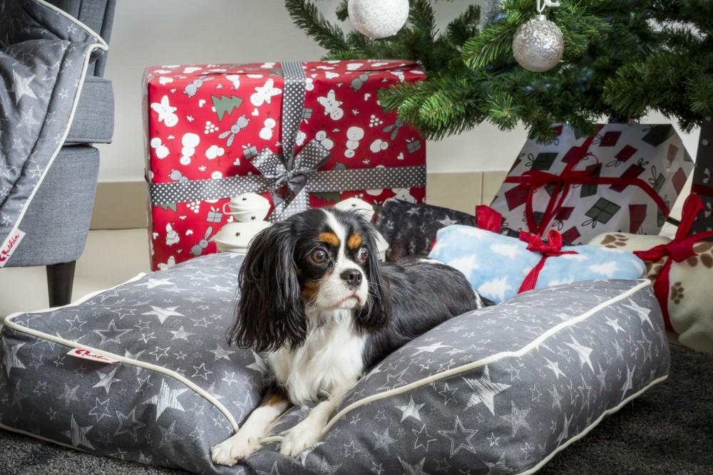 Božićna_kolekcija_Qushina5