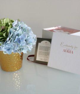 hortenzija zelena i plava