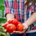 Koje se poljoprivredne kulture isplate proizvoditi i možete li dobiti poticaje za njih?