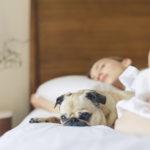 Jeste li čuli za higijenu spavanja?