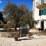 Naša Sonja ugostila nas je u svojoj La casa di Matiki koja je višestruko prepoznata od strane TripAdvisora i gostiju iz cijelog svijeta