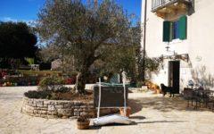 odmor u Istri