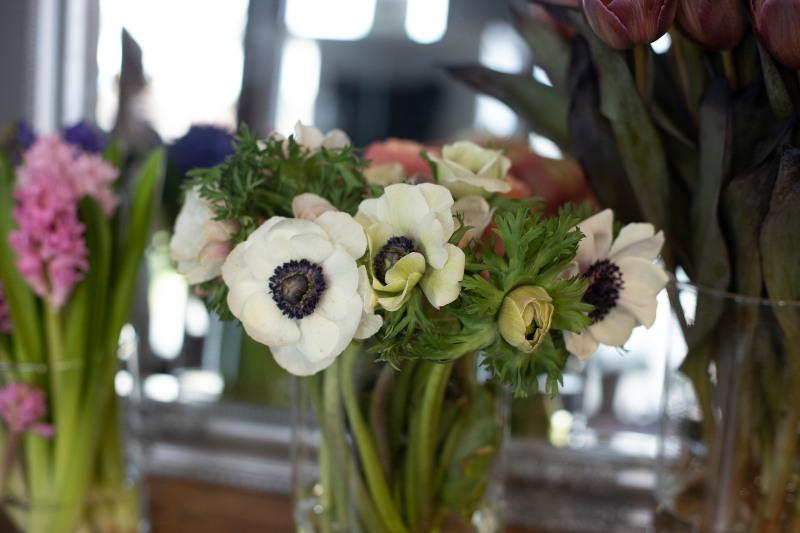 tajni jezik cvijeća