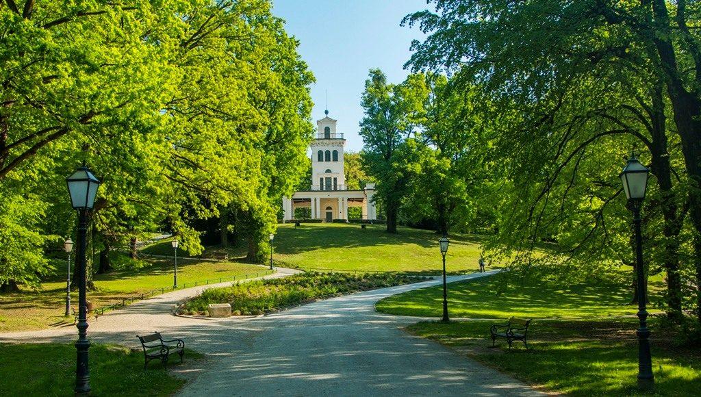DK Piknik by Jamnica Botanica